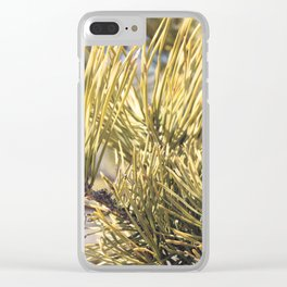 Pinus resinosa Details Clear iPhone Case