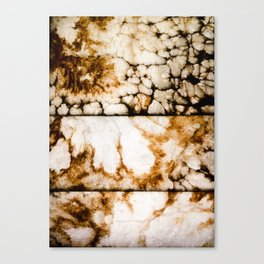 Weathered Alabaster - Grittier Canvas Print