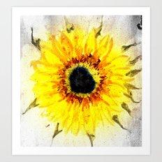 Sunflower from Water Art Print
