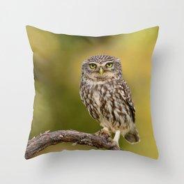 A little owl Throw Pillow