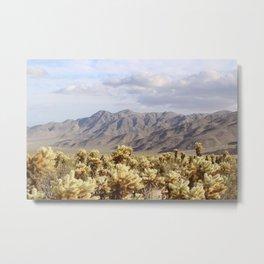 Cholla Cactus Garden, Joshua Tree National Park Metal Print