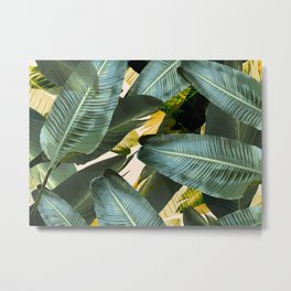 Banana leaf, tropical, Hawai, leaves, greens, palm leaves, outdoors, beach decor Metal Print