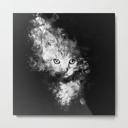 abstract young cat wsbw Metal Print