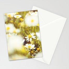 Daisyland Stationery Cards