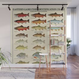 Illustrated Eastern Game Fish Identification Chart Wall Mural
