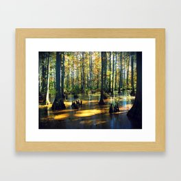 Cache River Wetlands Framed Art Print