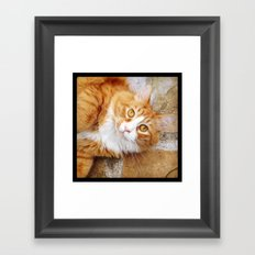 the love of my life Framed Art Print