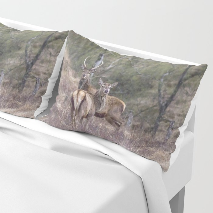 stags in the Scottish Highlands Pillow Sham