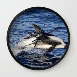 Hourglass Dolphin 2 Wall Clock