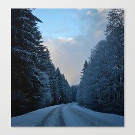 Snowy Tillamook Forest Canvas Print