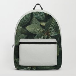Growth III Backpack