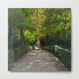 Tree lined path in Madrid Metal Print