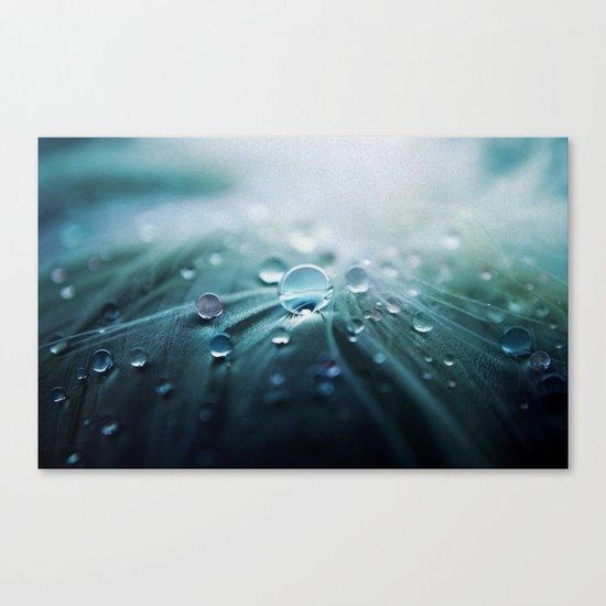 Rain drop Canvas Print