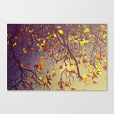 One Fine Day  Canvas Print