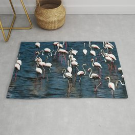 Flamingo Birds In Pink and White On Blue Rug