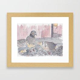 Portland Pigeons - Big Pink Framed Art Print