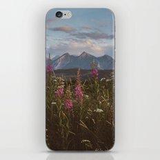 Mountain vibes iPhone & iPod Skin