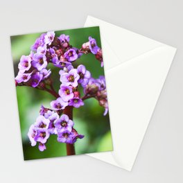 MAGIC PINK BLOSSOMS Stationery Cards