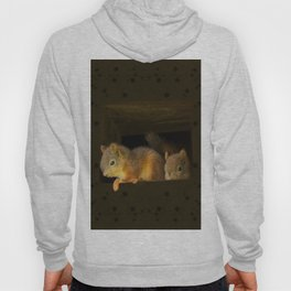 Young squirrels peering out of a nest #decor #society6 #buyart Hoody
