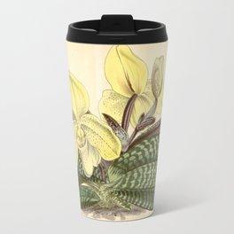 Paphiopedilum concolor Travel Mug