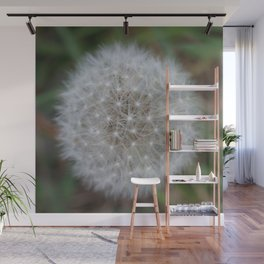 Dandelion Florets waiting to fly off Wall Mural