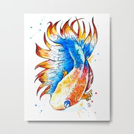 Beta Fish Metal Print