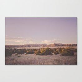 West Texas Wild Canvas Print