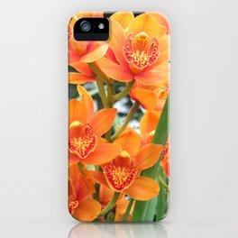 Orchid in Orange iPhone Case