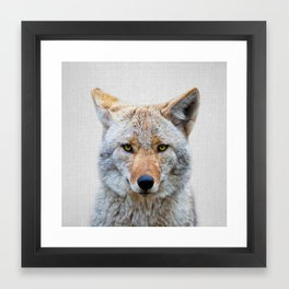 Coyote - Colorful Framed Art Print