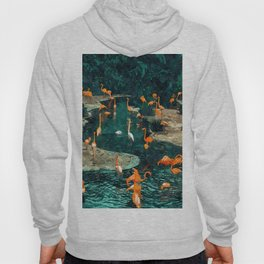 Flamingo Creek #flamingo #tropical #illustration Hoody