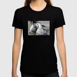 Royal Terns T-shirt