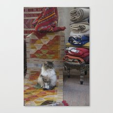 Marrakesh Cats III Canvas Print