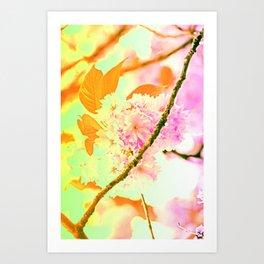 Spring hippy love colors Art Print