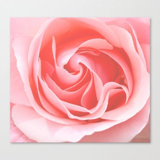 Velvet pink rose - Roses Flowers Flower Canvas Print
