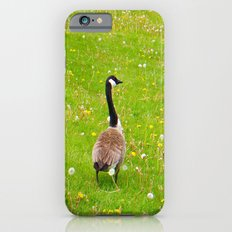 Goose in a field of flowers Slim Case iPhone 6s