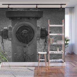 Eddy Valve Fire Hydrant Black and White Fine Art Photography Closeup Fireplug Detail Wall Mural