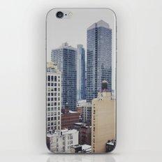 Views of New York City iPhone Skin