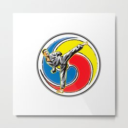 Karate logo Metal Print