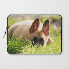 I'm not a fox but a Malinois puppy Laptop Sleeve