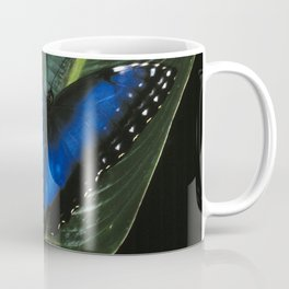 Costa Rican Blue Morpho Butterfly Coffee Mug