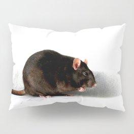 Rat Pillow Sham