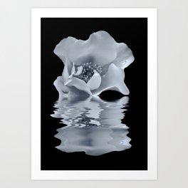 blue rose reflection Art Print