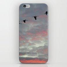 Sunrise Express iPhone & iPod Skin