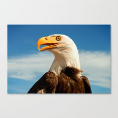 EAGLE EYED Canvas Print