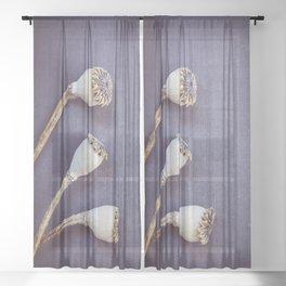 Poppy Seed Heads Sheer Curtain