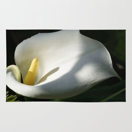 White Calla Lilies Over Black Background In Soft Focus Rug