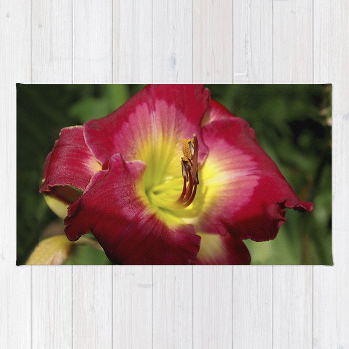 Rich red daylily Joan Derifield Rug