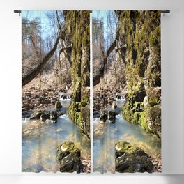 Alone in Secret Hollow with the Caves, Cascades, and Critters - Peering into the Cold, Clear Spring Blackout Curtain