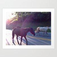 Wild Horses. Art Print