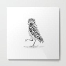 The Burrowing Owl Metal Print